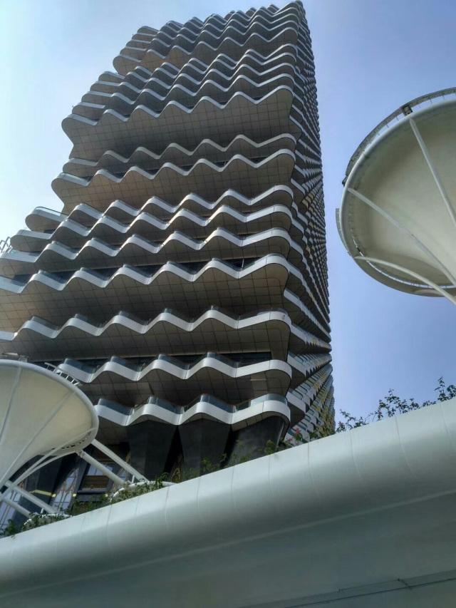 梧桐树大厦侧面阳台银色氟碳铝单板