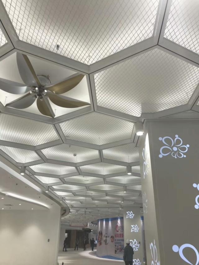 六角形边框铝拉网板吊顶