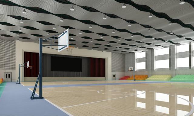 篮球馆波浪形冲孔铝单板
