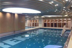 游泳馆墙面冲孔木纹铝单板
