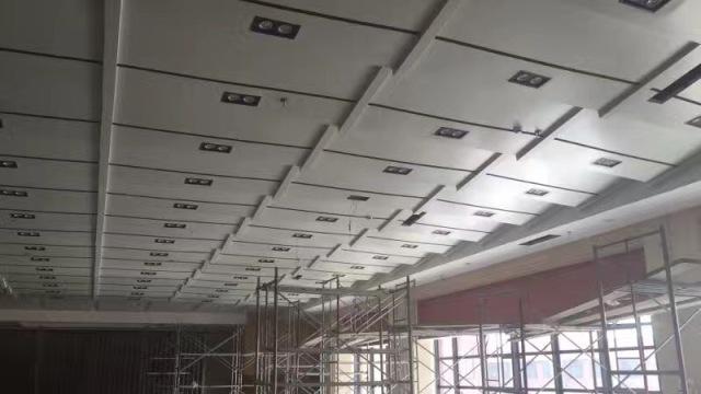 多功能会议室多级吊顶铝单板