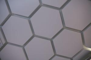 六边形凸出铝单板