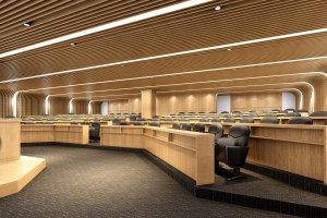 阶梯会议室木纹铝方通吊顶和墙面一体板