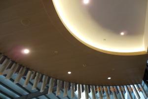 顶面木纹铝单板和内饰灯槽