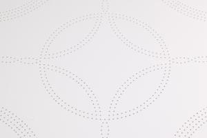 白色冲金钱孔铝扣板