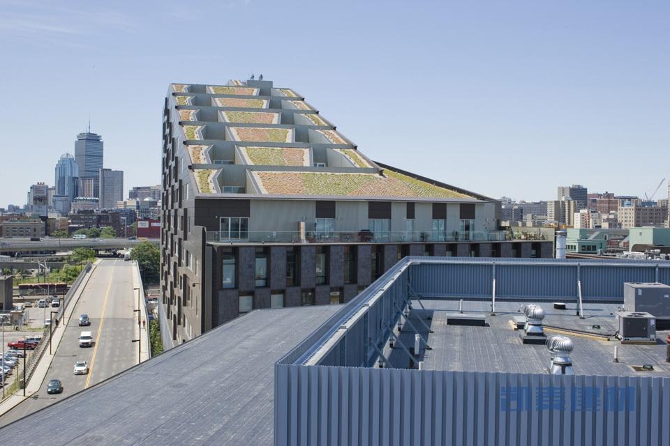 MacAllen大厦公寓楼顶阳台绿化