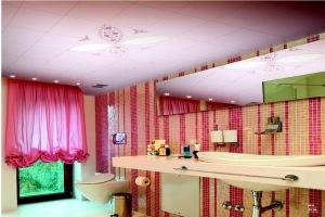 卫生间玫瑰色铝扣板