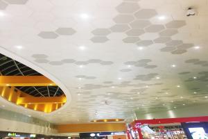 六角形铝单板吊顶