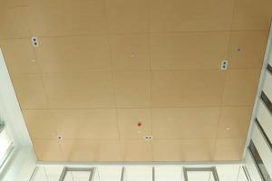 前厅吊顶木纹铝单板